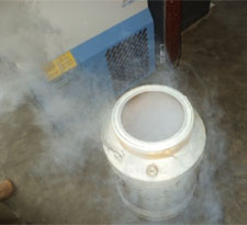 Liquid Nitrogen Shipper ready to be loaded